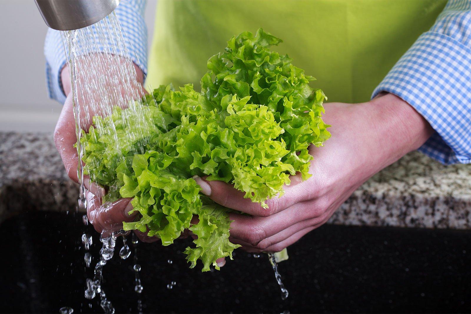 Wahing fresh lettuce