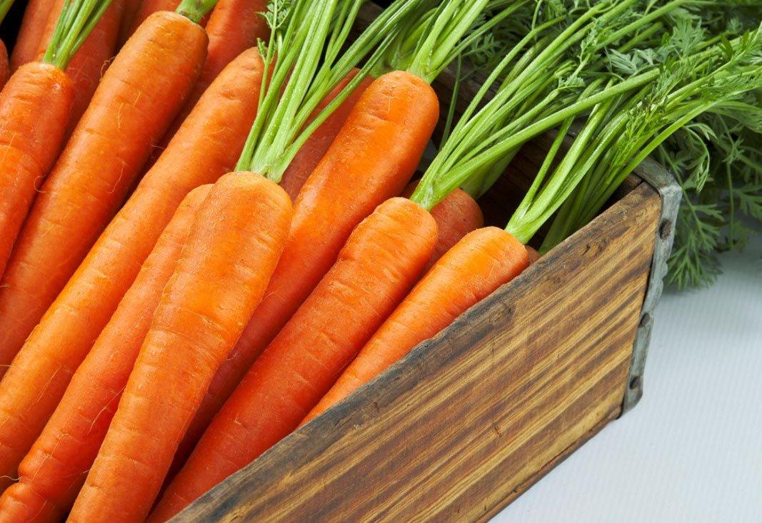 Fresh box of carrots close up